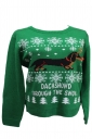 Pet Dog&Snowflake Printed Crew Neck Ugly Christmas Sweater Green