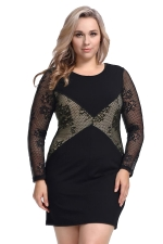 Womens Plus Size Lace Patchwork Crew Neck Long Sleeve Dress Black