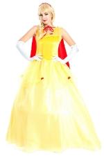 Luxury Disney Medieval Princess Costume
