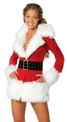 Sexy Long Sleeve Santa Costumes