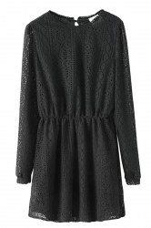 Ladies Crew Neck Tunic Long Sleeve Plain Sheer Lace Smock Dress