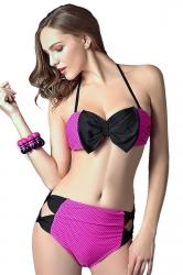 Rose Red Halter Butterfly Bikini Top & High Waisted Swimwear Bottom