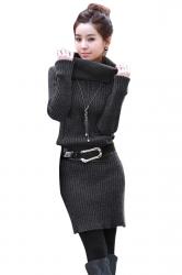 Womens Plain Turtleneck Long Sleeve Pullover Sweater Dress Dark Gray