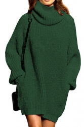 Womens Thicken High Collar Long Sleeve Plain Sweater Dress Dark Green