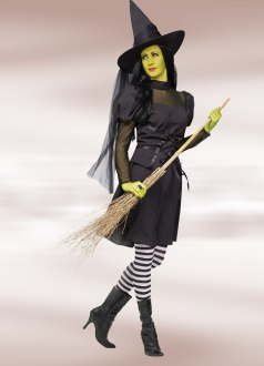 Wicked Witch Womens Halloween Costume
