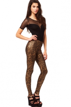 Plus Size Coffee Leopard Animal Print Leggings