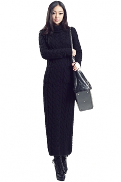 Black Elegant Womens Turtleneck Long Sleeve Plain Sweater Dress