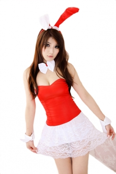 Red Naughty Ladies Tube Lace Dress Halloween Bunny Costume