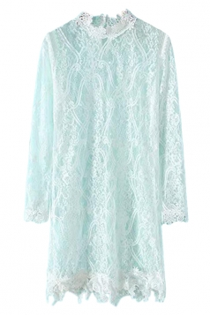 White Pretty Womens Stand Collar Lace Plain Long Sleeve Dress