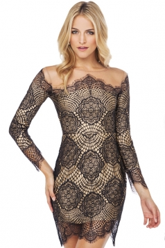 Black Lace Patchwork Womens Fashion Mesh Long Sleeves Dress