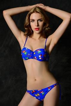Blue Butterfly Swimsuit Top & Flag Animal Print Bikini Bottom