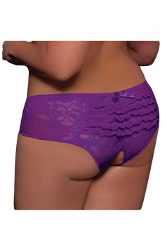 Purple Sexy Womens Lace Cut Out Panty
