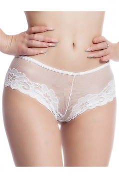 Womens Sexy Mesh See Through Panty White