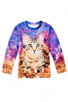 Womens Crewneck Long Sleeve Cat Printed Pullover Sweatshirt Blue
