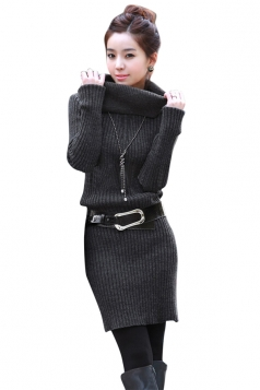 Womens Plain Turtleneck Long Sleeve Pullover Sweater Dress Dark Gray