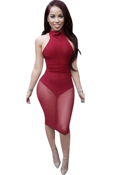 Womens High Collar Sleeveless Sheer Mesh Backless Clubwear Dress Ruby