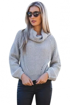 Womens Turtle Neck Long Sleeve Short Plain Pullover Sweater Gray