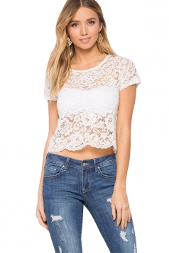Womens Sheer Crewneck Lace Short Sleeve Plain Crop Top White