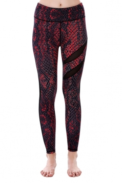 Women Mesh Patchwork Snakeskin Print Yoga Sports Wear Leggings Dark Red