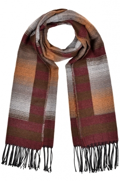 Stripes Gradient Printed Shawl Scarf With Fringe Coffee