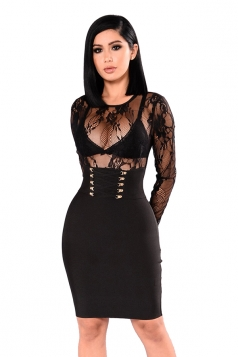 Long Sleeve Eyelet Lace Up Sheer Zipper Bodycon Clubwear Dress Black