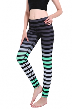 Womens Skinny Ankle Length Colorful Stripes Printed Leggings Green