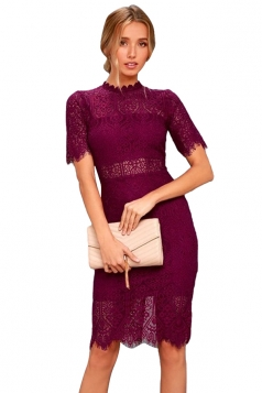 Womens Bodycon Sheer Short Sleeve Scalloped Hem Split Lace Dress Ruby