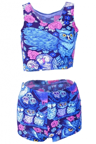 Blue 3D Cute Owl Printed Chic Womens Tank Sweatshirt Suit