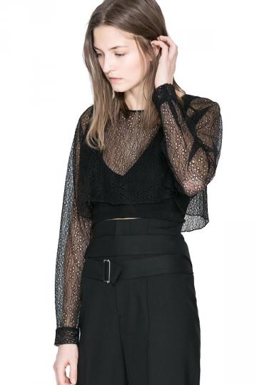 Black Mesh Sleeve V Neck Crop Sheer Top