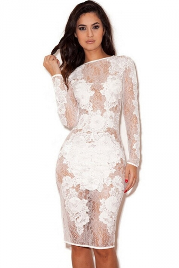 White Lace Patchwork Embroidered See Through Sexy Womens Dress ...