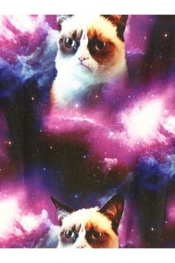 Purple Ladies Pullover Crew Neck Grumpy Cat Printed Sweatshirt
