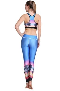 Womens Sunset Paradise Pattern 3D Printed Yoga Sports Bra Set Purple
