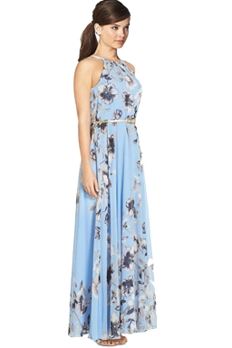 Womens Pretty Floral Printed Sleeveless Floor Length Dress Blue